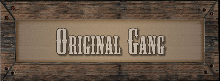 James Younger Gang Banner